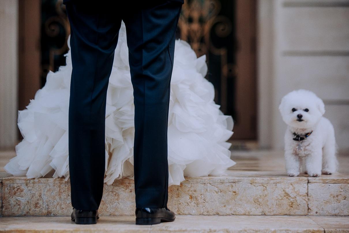 Miami Wedding Photographer Luxury Wedding ideas